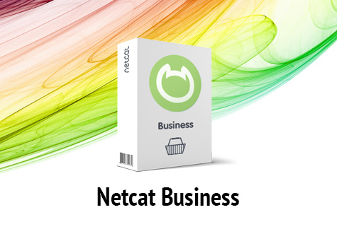 Netcat Business